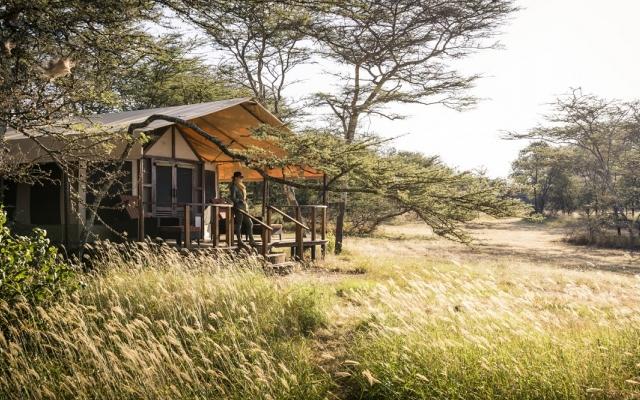 Safari Tanzanie en avions taxis et petits camps de toile