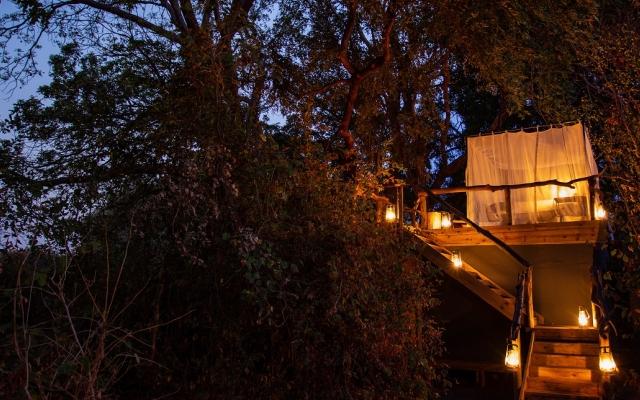 Nuit dans les arbres dans la concession de Sapi - Safari Mana Pools