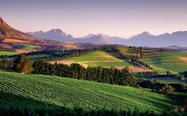 Région des vignobles de Cape Town en voyage sur mesure Afrique du Sud