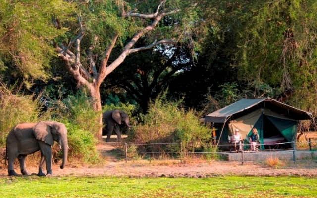 Flatdogs Camp et ses tentes - Voyage South Luangwa safari Zambie