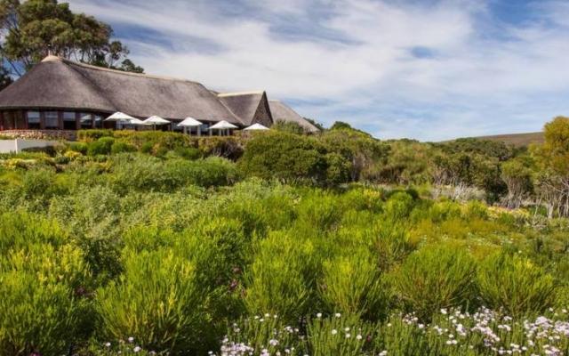 Grootbos Garden Lodge sur la garden route en Afrique du Sud