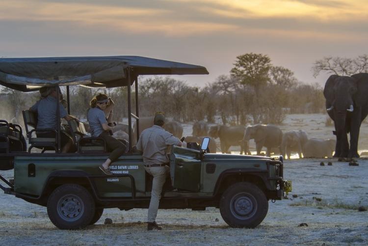 Safari au coucher du soleil au parc de Hwange