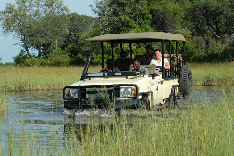 Safari à Baines camp au Botswana