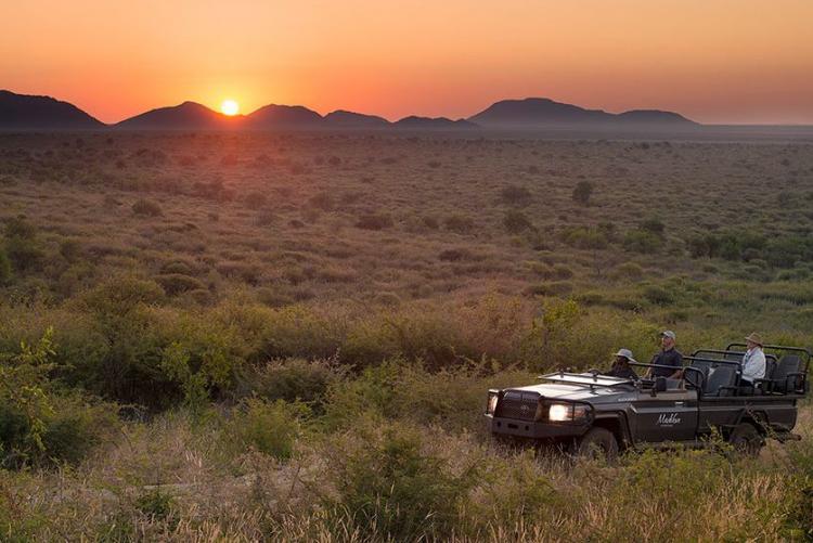Safari en 4x4 dans la réserve de Madikwe