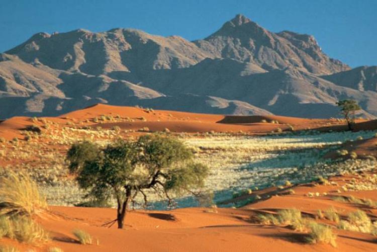 autotour Namibie
