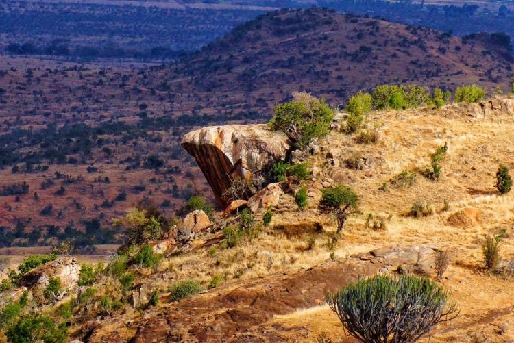 Pride Rock au pays du Roi Lion : le Kenya