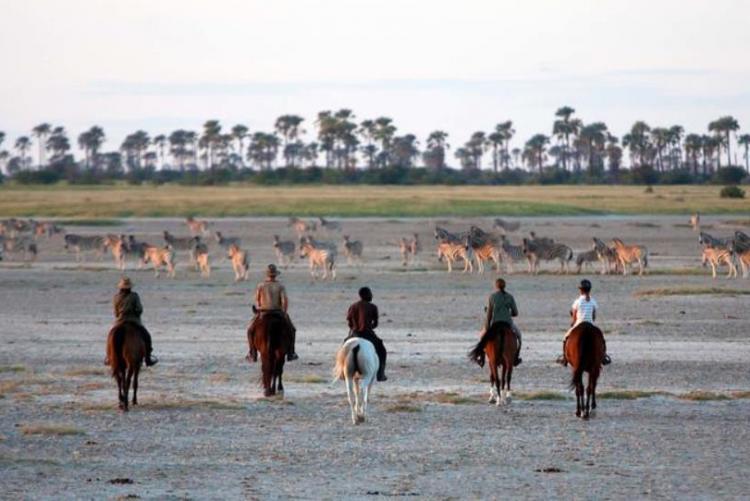 Safari à cheval au pan du Makgadikgadi (Photo ©David Crookes)