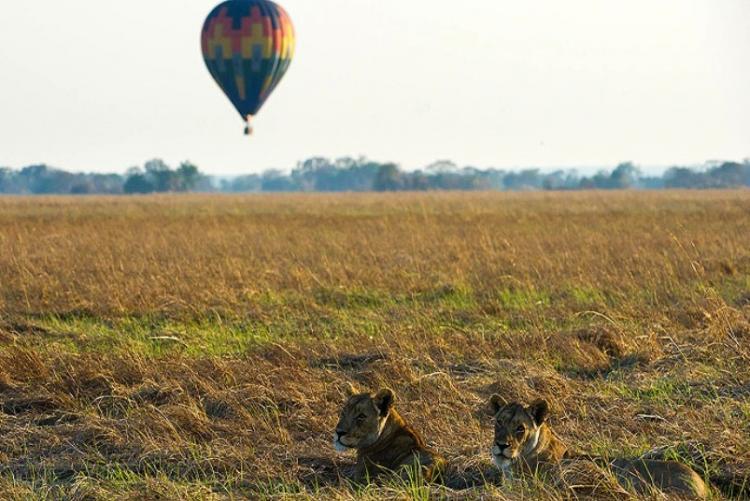 Survol en montgolfière aux Busanga Plains dans le parc de Kafue en voyage en Zambie