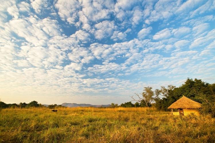 safari en famille zambie afrique