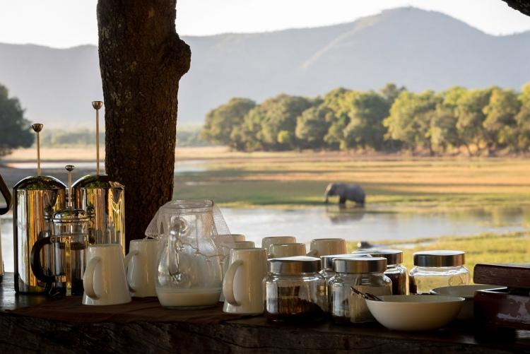 safari circuit afrique zambie