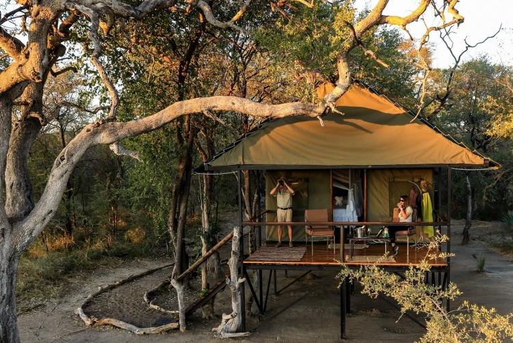 Camp de safari Hwange Zimbabwe
