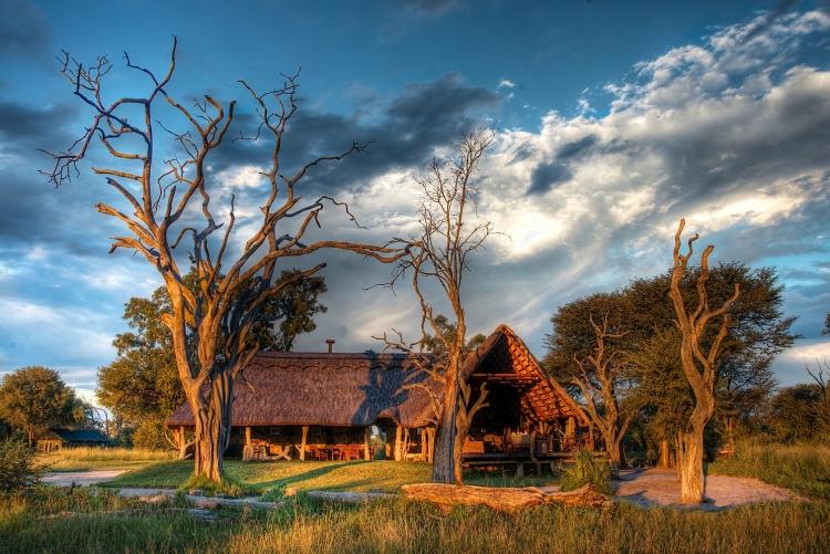 Séjour Hwange safari Zimbabwe