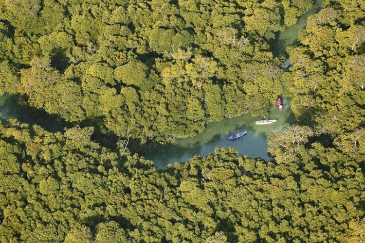 Kayak à Azura Quilalea dans l'archipel de Quirimbas au Mozambique