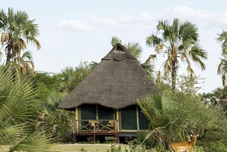 Safari Tanzanie, séjour à Tarangire