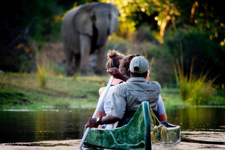 Safari en canoé sur le Zambèze, au Lower Zambezi, à Chongwe River Camp