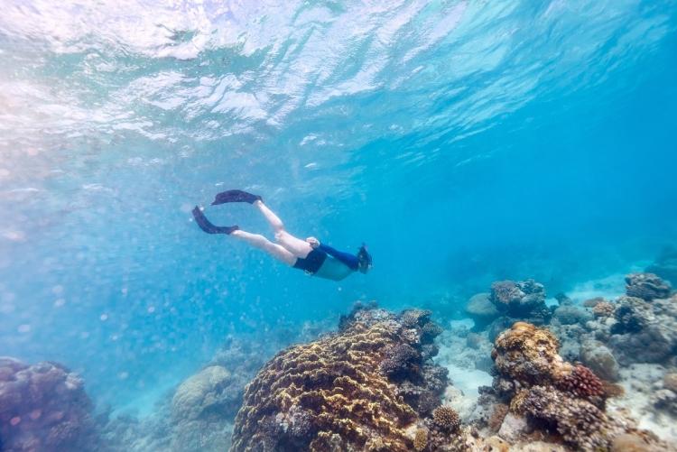 Snorkeling dans l'archipel de Bazaruto au Mozambique