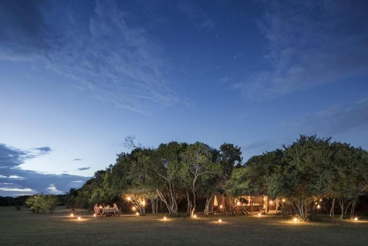 Safari Maasai Mara en petit camp de toile au Kenya