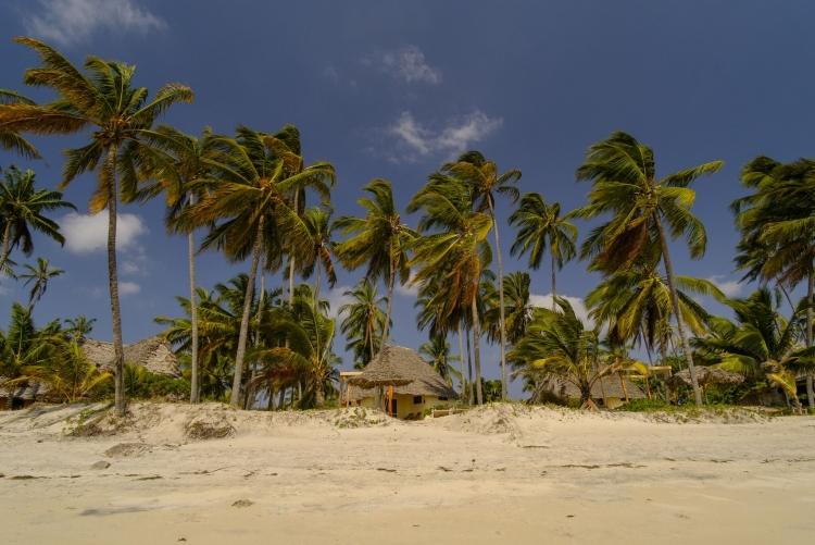 Séjour plage côte Tanzanie