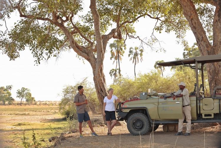 Safari Ruaha Tanzanie