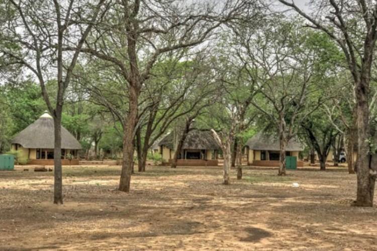 Safari Kruger en famille - Voyage sur mesure en Afrique du Sud