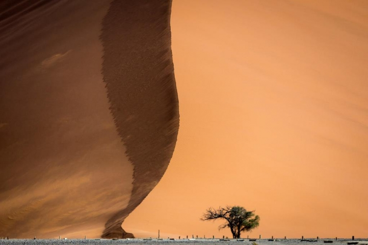 Sossusvlei, Autotour en Namibie