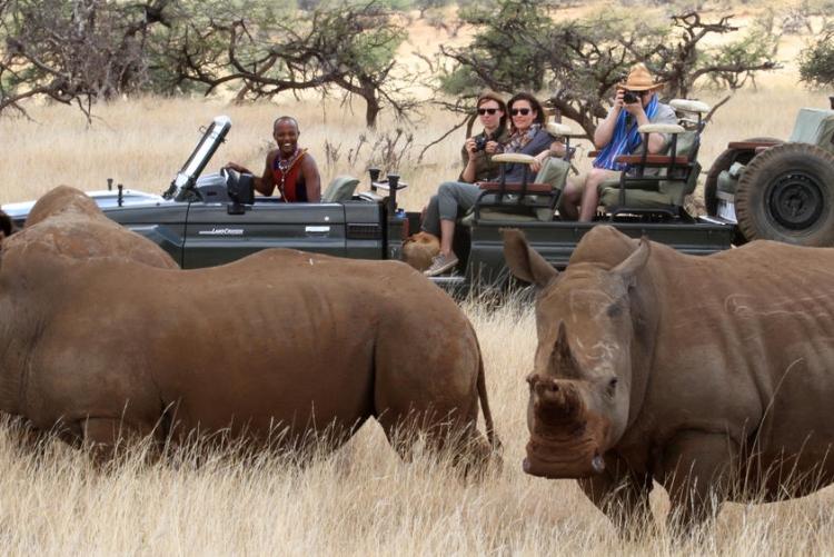 Safari à Lewa Wildlife Conservancy