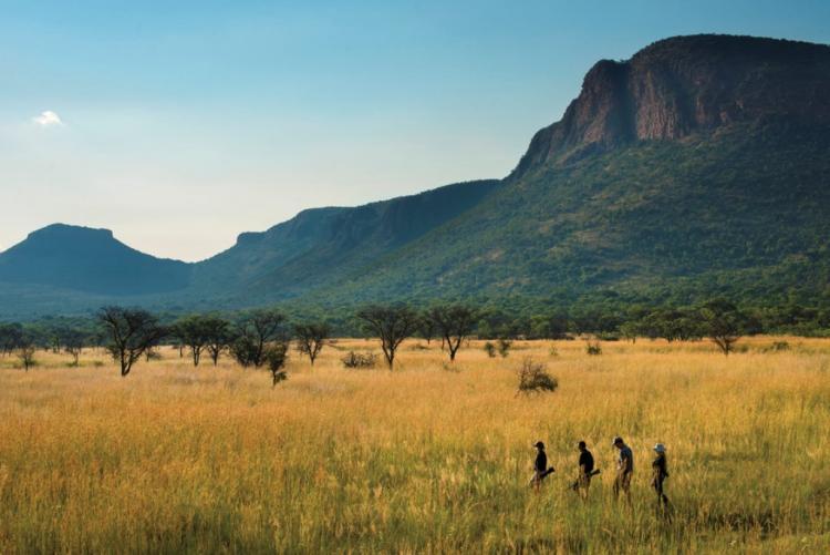 Safaris à pied à Marataba, Marekele - Voyage sur mesure Afrique du Sud