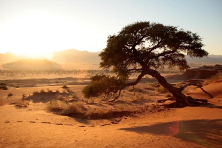 Afrique circuit en 4x4