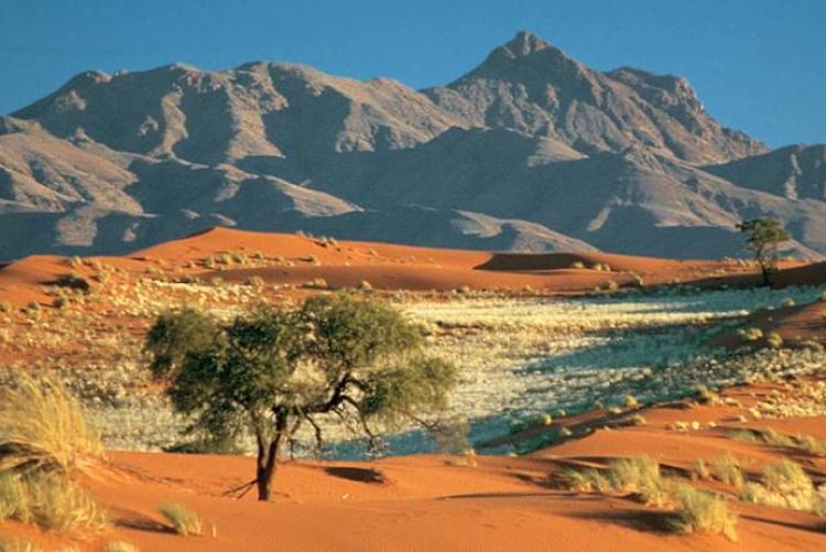 Paysages du Namibrand lors de votre autotour en Namibie