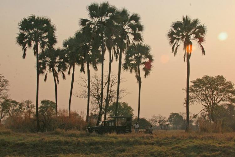 Safari dans le sud du parc de Kafue en Zambie