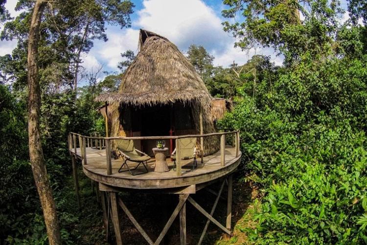 voyage Congo