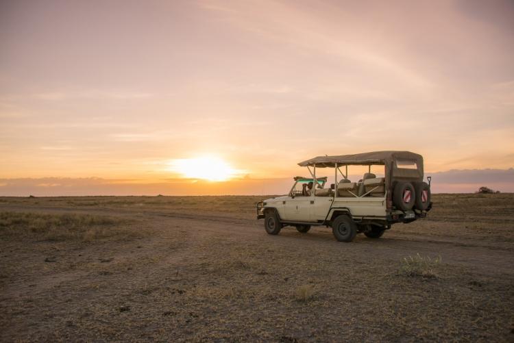 Safari en 4x4 Tanzanie