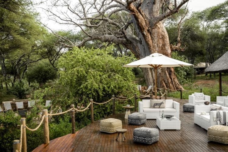 Safari deluxe Tanzanie