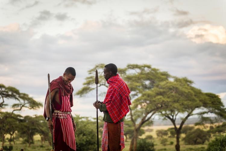 Voyage Tanzanie safari