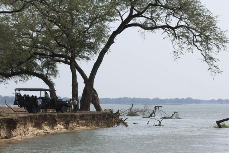 Reserve de Sapi au bord du Zambèze (Mana Pools, Zimbabwe)