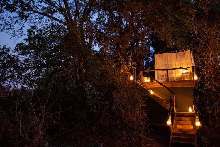 Safari de luxe Afrique