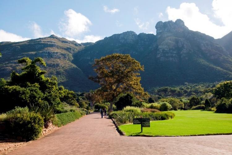 Les jardins botaniques de Kirstenbosh à Cape Town, week end au Cap