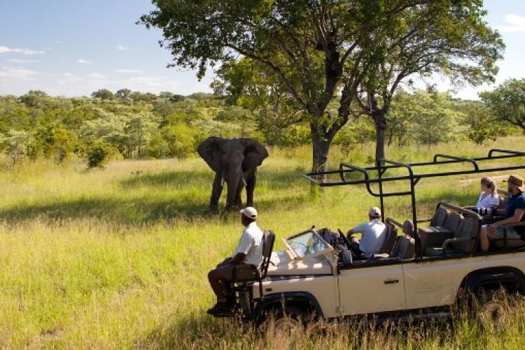 Safari prix Afrique du Sud