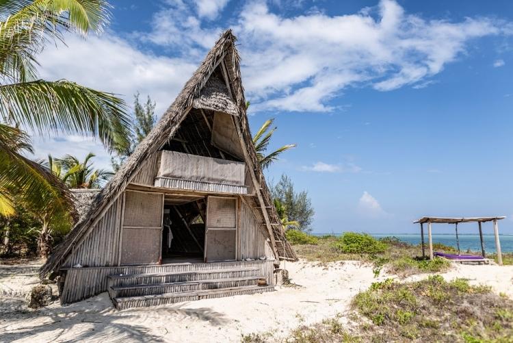 Safari Selous et séjour plage Fanjove
