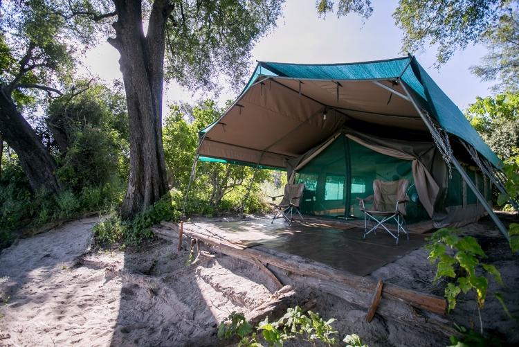 Bushman Plainscamp le seul et unique camp tenu par des bushmen au delta de l'Okavango