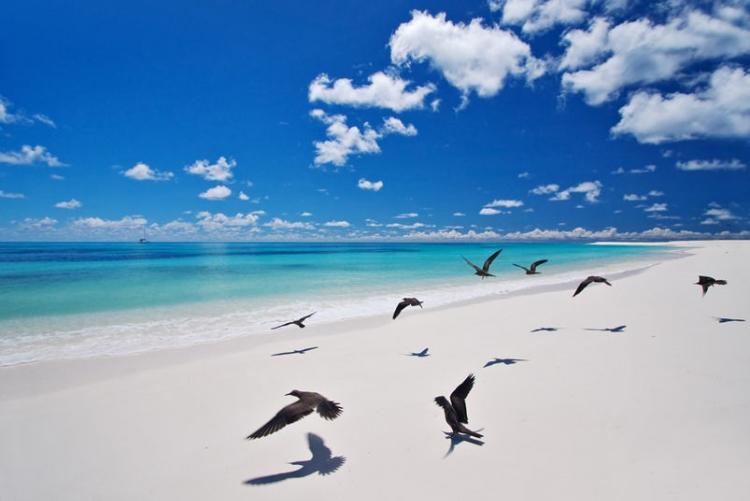 Bird Island, voyage sur mesure aux Seychelles