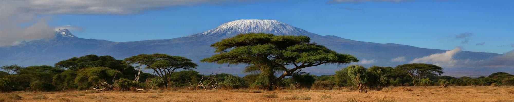 Le Kilimandjaro depuis Amboseli en safari au Kenya