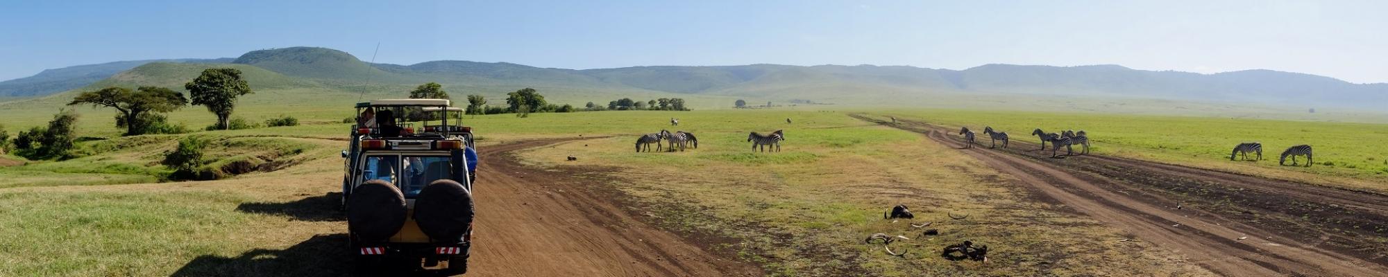 Safari Tanzanie en famille