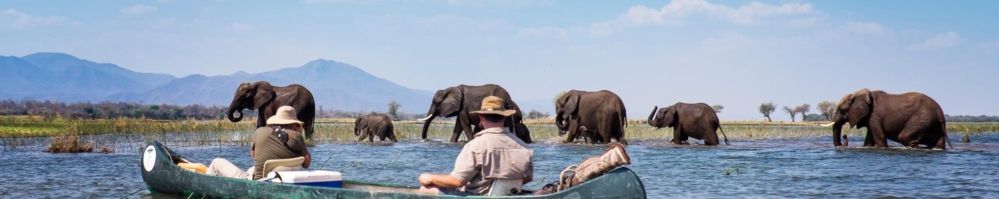 Safari famille Zimbabwe