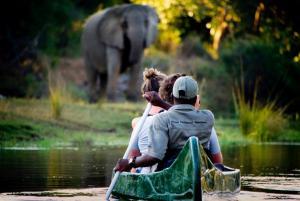 Safari en canoé au Lower Zambezi (photo d'Andrew Macdonald Time & Tide - Chongwe Safaris)